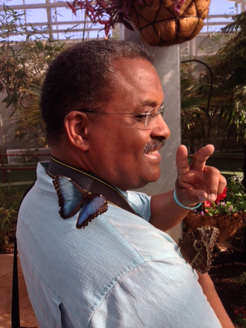 Real Butterfly Flew on Darrell in Arizona